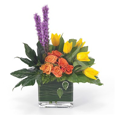 """Contemporary Expressions"" flower bouquet (BF15-11K)"